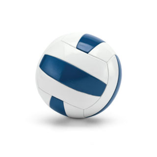 ballon volley bicolore